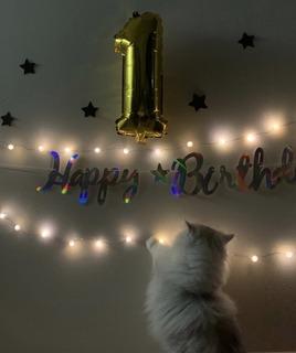 1歳誕生日.jpeg