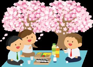 お花見  イラスト.png