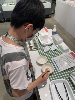 写真�B菜箸体験.JPG