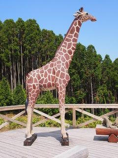 動物園�F.JPG
