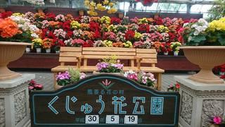 花公園�A.jpg