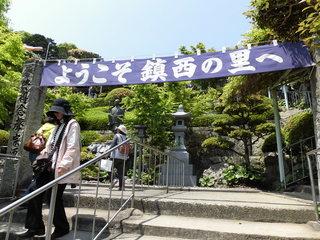 藤まつり�F.JPG