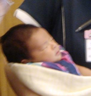 赤ちゃん 003.jpg