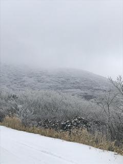 雪遊び�@.jpg