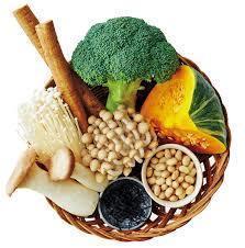 食物繊維�B.jpg
